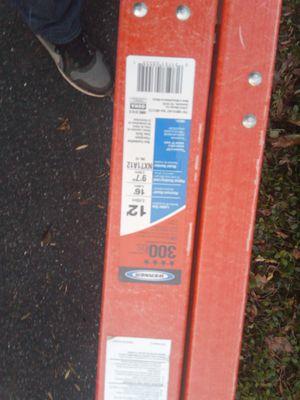 Werner 12 ladder fiberglass for Sale in Germantown, MD