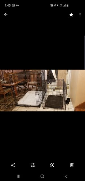 Xl dog crate with bedding like new for Sale in Palatine, IL
