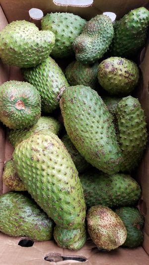 Soursop , guanabana for Sale in Queens, NY