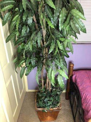 Large Tree Plant decor for house/room for Sale in Las Vegas, NV