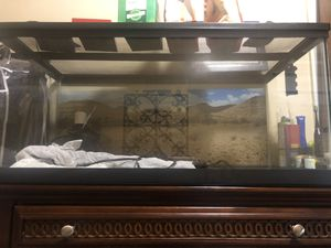 40 gallon tank for Sale in New York, NY