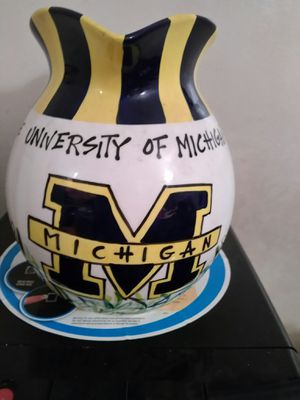 University of Michigan Pitcher for Sale in Detroit, MI