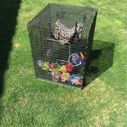 Hamster Or Bird Pet Cage for Sale in Goodyear,  AZ
