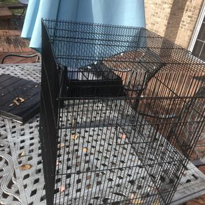 Medium Bird Cage for Sale in Canton, MI