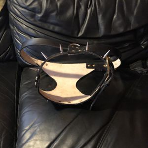 Dog Harness for Sale in Melrose Park, IL