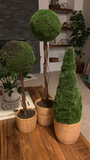 Fake tree plants for Sale in Vancouver, WA