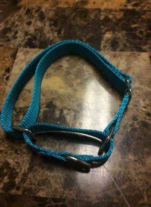 Pet collar for Sale in Wichita, KS