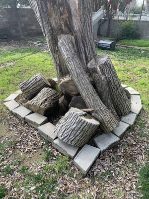 FREE FIREWOOD by FRESNO STATE for Sale in Fresno, CA