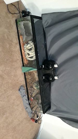 Reptile and tanks for Sale in Frederick, MD