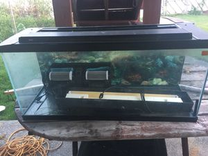 Fish tank ans filter for Sale in Malden, MA