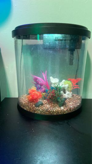 Fish tank setup (MUST COME TO ME) for Sale in Twinsburg, OH
