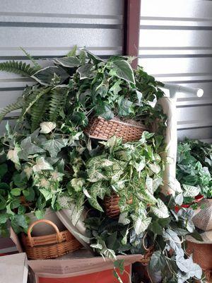 Fake plants for Sale in Stuart, FL