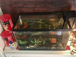 10 gallon aquarium with foods and filter for Sale in Wildomar, CA