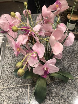 Fake pink orchid plant for Sale in Bonney Lake, WA