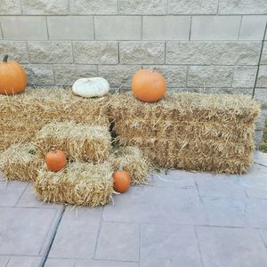 Free Hay And/or Pumpkins for Sale in Corona, CA