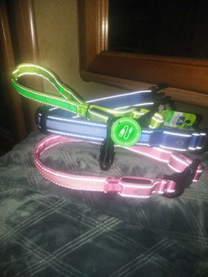 Glow in the dark, light up dog collars. for Sale in Fresno, CA