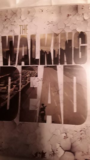 AMC's THE WALKING DEAD Poster by NECA for Sale in Mason City, IA