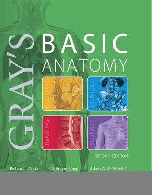 Gray's Basic Anatomy 2 Edition by Richard Drake, A. Wayne Vogl, Adam W. M. Mitchell / ISBN 9780323474047 / PDF eBook Fast & Free Delivery for Sale in Minneapolis, MN
