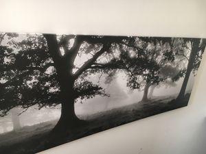 Tree Canvas for Sale in Philadelphia, PA