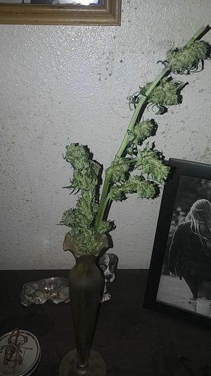 Flower vase for Sale in Renton, WA