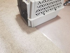 Nice but used plastic dog kennel. for Sale in Oklahoma City, OK