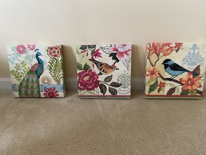 3 beautiful colourful bird pictures can be sold separately for Sale in Stone Ridge, VA