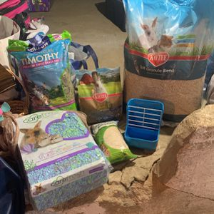Bunny Supplies for Sale in Clementon, NJ