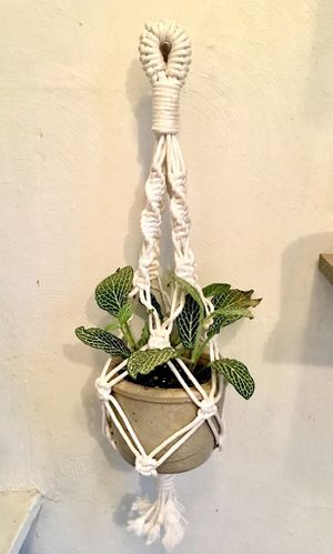 Macrame Plant Holder / Hanger for Sale in McKeesport, PA
