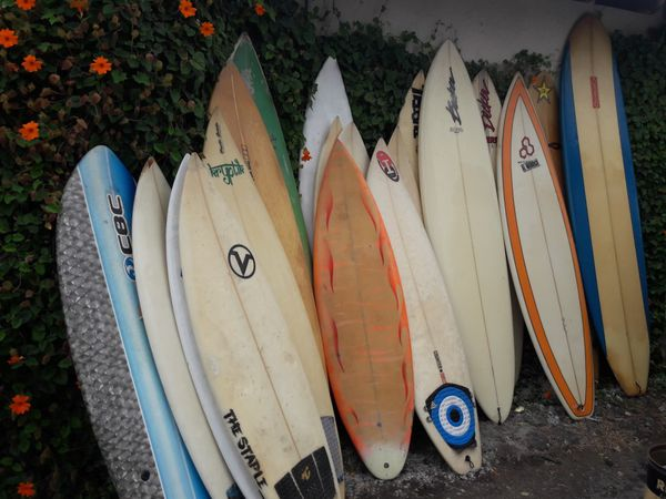 SURFBOARDS! SURF BOARDS!
