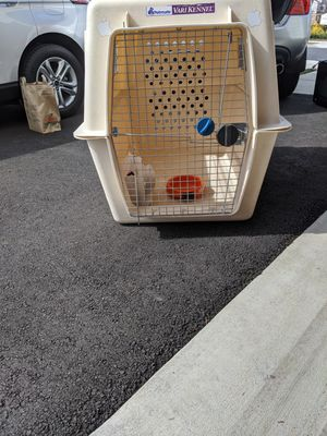 Petmate Kennel - Giant size crate, XXXL for Sale in Stone Ridge, VA