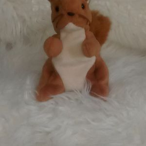 """This Is """"Nuts"""", He Is a Rare Retired Beanie Baby for Sale in Oakland, CA"""