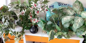 Faux plants/orchid for Sale in Stockton, CA