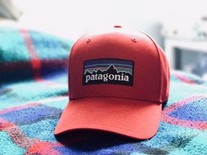 Patagonia snapback for Sale in San Diego, CA