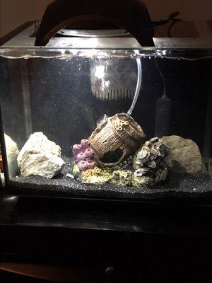 2 Nano Aquariums For Sale for Sale in Florida City, FL