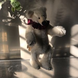 Bearly There Inc. Numbered Polar Bear for Sale in Fort Lauderdale, FL