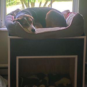 hand made wooden dog bed for Sale in Shenandoah Junction, WV