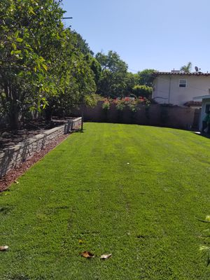 Sod installed for Sale in Anaheim, CA