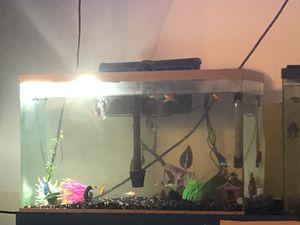 Fish tank with accessories for Sale in Stockton, CA