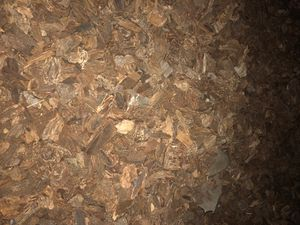 Free large bark for Sale in Oakland, CA