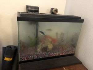 20 gallon fish tank for Sale in Hollister, CA