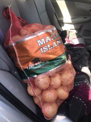 Yellow Onion 60 pound for Sale in Chula Vista, CA