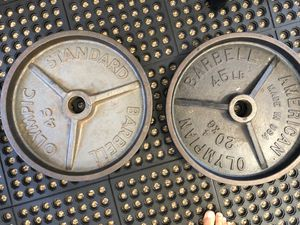 45 lb Olympic plate weights home gym for Sale in Mountain View, CA