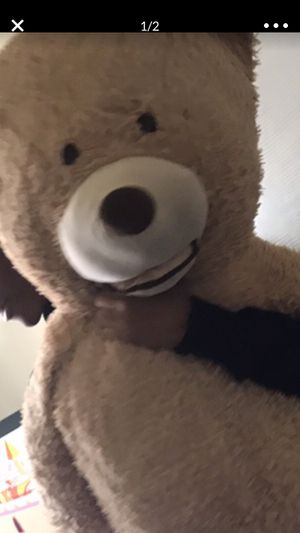 Mid size teddy bear for Sale in Oxon Hill, MD