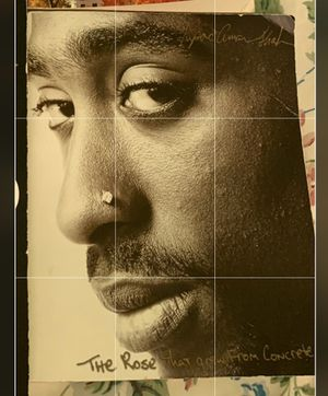 The rose that grew from concrete by Tupac shakur for Sale in Stockton, CA
