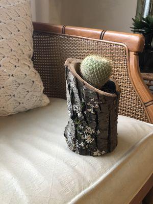 Log succulent vase / holder / candle holder / wood for Sale in Auburn, WA
