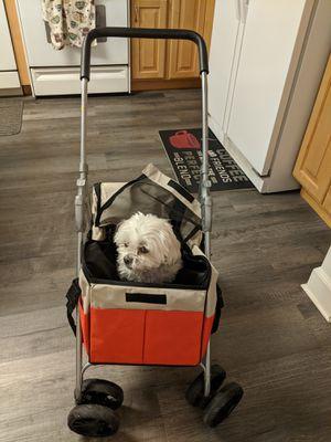 Doggie stroller for Sale in Salt Lake City, UT