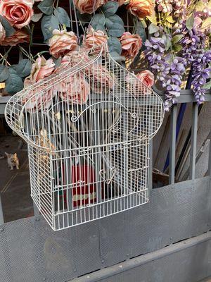 Decorative Bird Cage for Sale in Riverside, CA