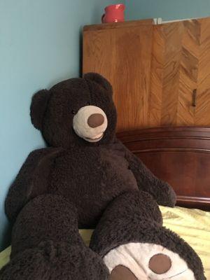 Big teddy bear for Sale in Rochester, MI