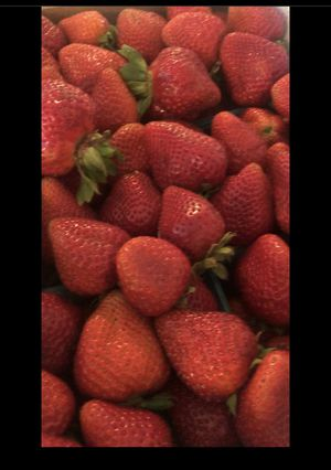 Fresh strawberry (arrangements) for Sale in Fontana, CA