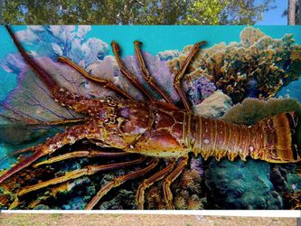 Lobster On Wood Art Patio Fishing Boats Outdoors for Sale in Miami,  FL